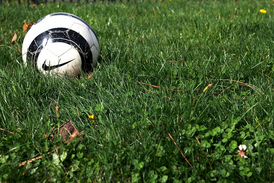 Clean Soccer Ball In Grass